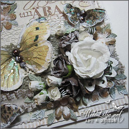 reprintbutterflies1e